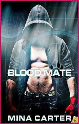 Blood-Mate-Stroke