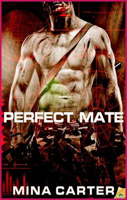 Perfect-Mate-Stroke