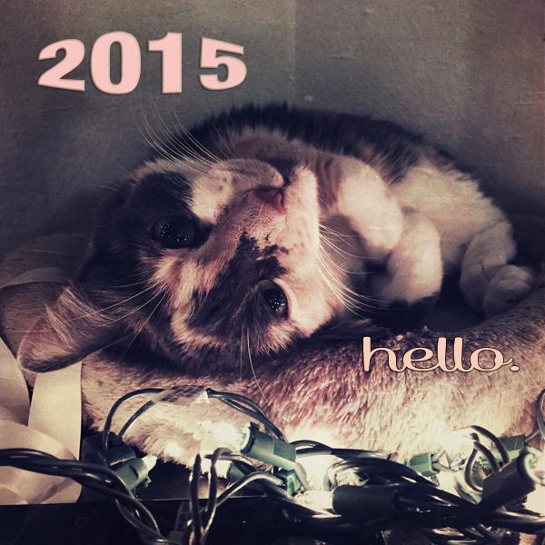 2015Hello