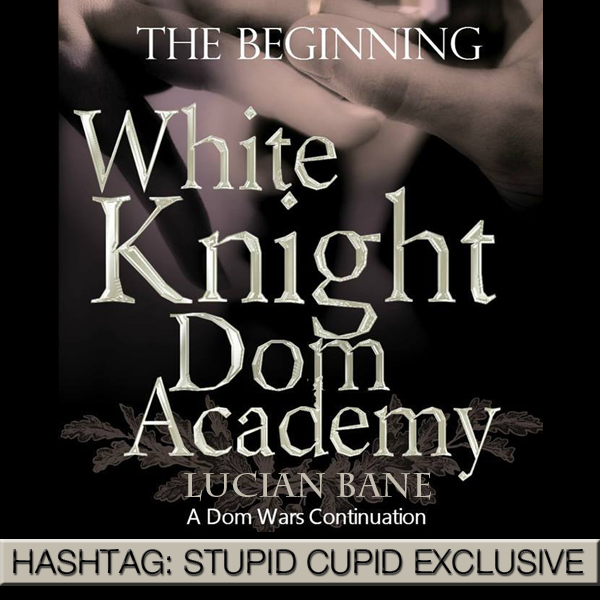 Hashtag: Stupid Cupid – The Wedding Vows by Lucian Bane
