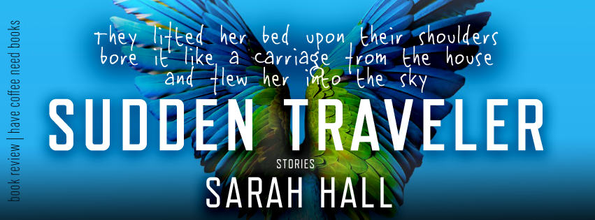 Sudden Traveler by Sarah Hall