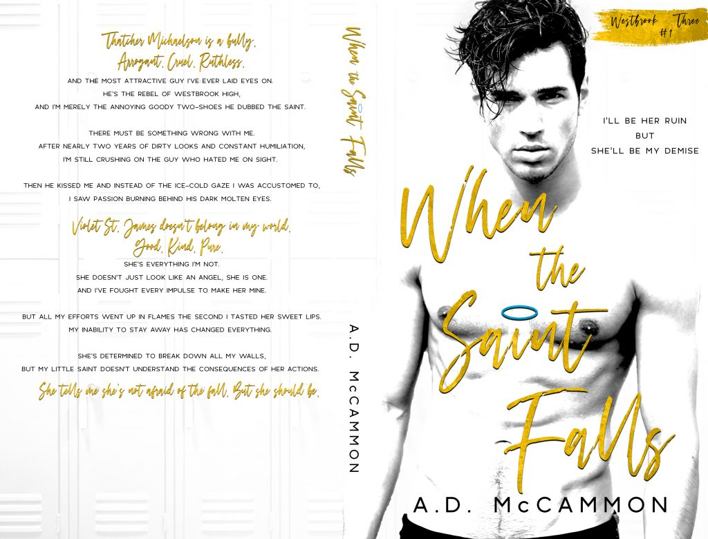 When the Saint Falls by AD McCammon
