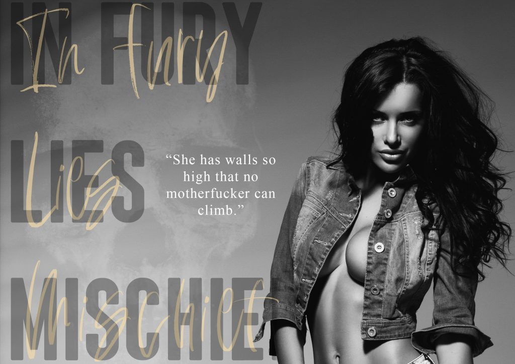 In Fury Lies Mischief by Amo Jones